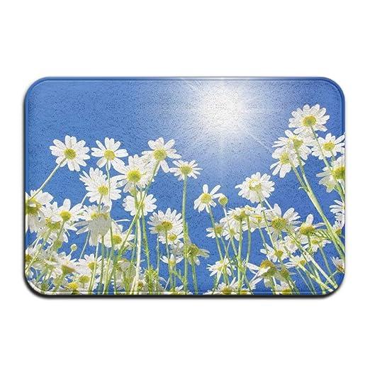 HUVATT - Felpudo para puerta de casa con diseño de flor de loto ...
