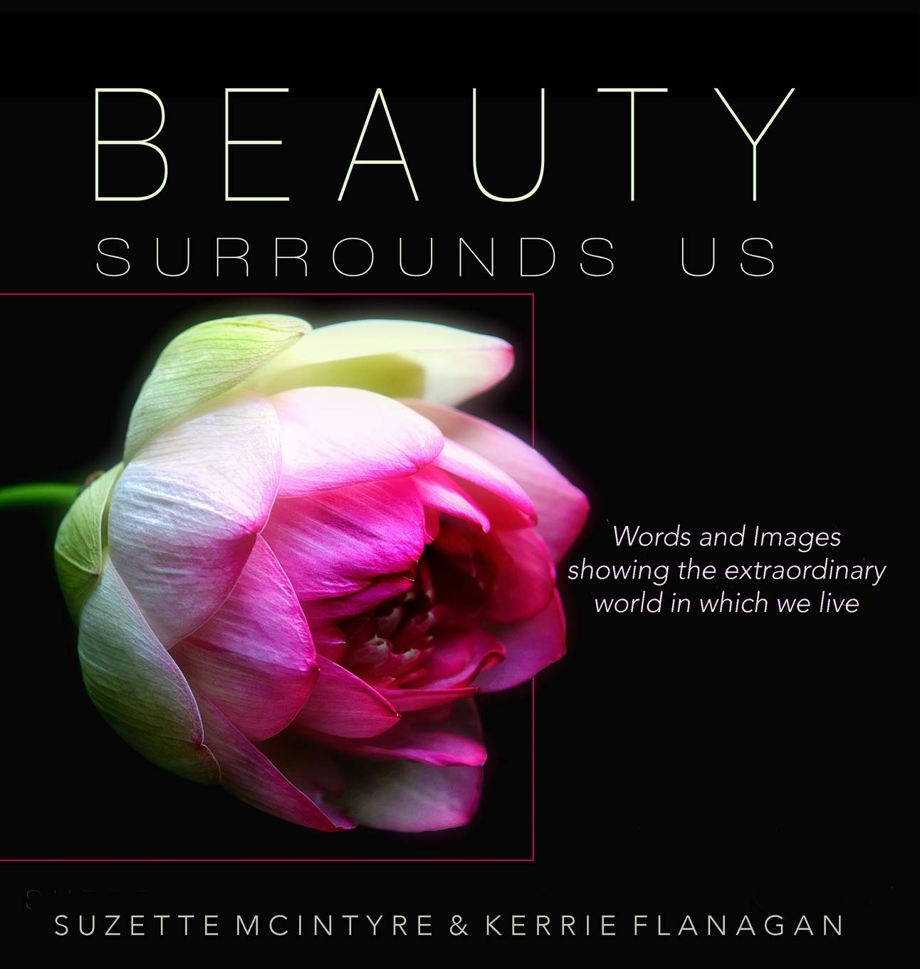 Beauty Surrounds Us A Words Images Coffee Table Book Kerrie L
