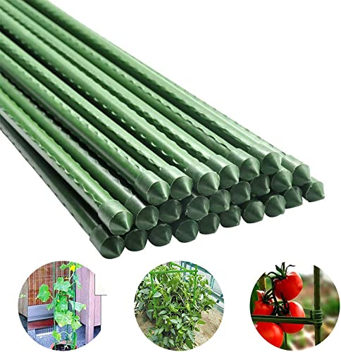 Derlights 36 Inches Plant Stakes Sturdy Garden Stakes Tomato Stakes,Plant Support Stakes for Potted Plants Trees Cucumber Fences Beans, Pack of 10