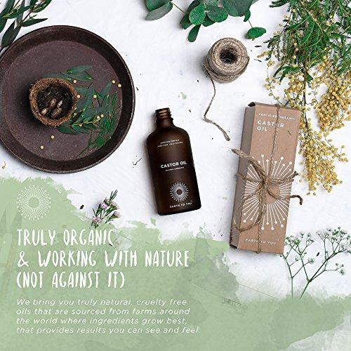 100% puro orgánico aceite de ricino. hexano libre, prensado en frío, no OMG para el cabello, pestañas y cejas crecimiento. Reparación pelo, hidrata la piel ...