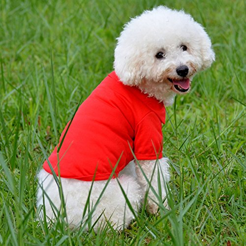 Small Pet Cotton Clothes, Dog Breathable Summer T Shirts for Small to Medium Puppy Cats (RED,L)