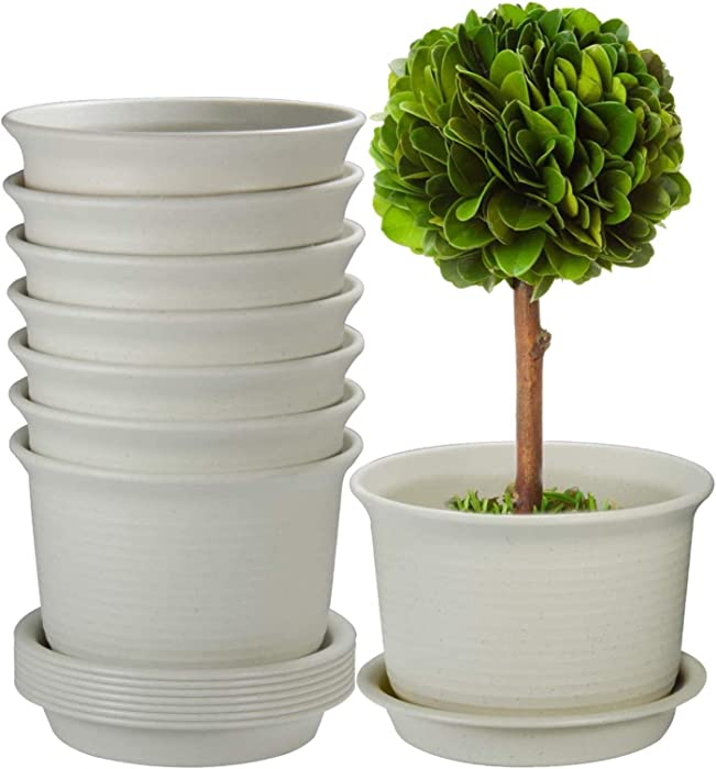 Top 10 Food Safe Flower Pot Terracotta