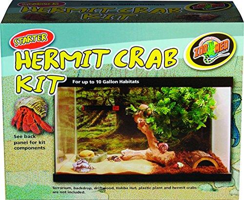 Zoo Hermit Crab (Zoo Med Starter Hermit Crab Starter Kit)
