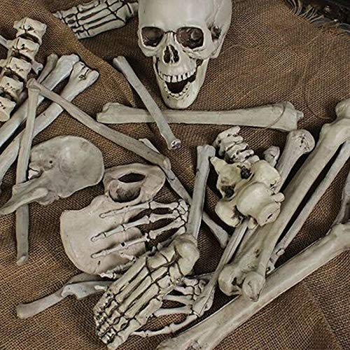 28PCS Adult Skeleton Bone Grave Skull Halloween Haunted