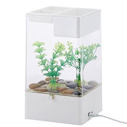 D@Qyy Mini Acrylic Creative Desktop Transparent Aquarium - Acuario Acuático Perezoso para Facilitar El
