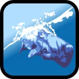 Dolphin Show: Whale And Dolphin Games For Kids Free