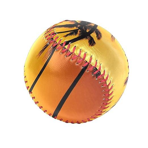 d98670ca757bf Amazon.com: Baseballs Palm Tree Sunset Nature Baseball Ball for ...