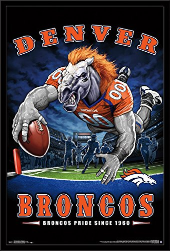 Trends International Framed Poster Denver Broncos - End Zone 17 24.25
