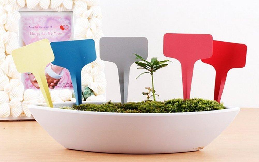 Dosige 100 St/ück Pflanzenstecker Plastik Stecketiketten Beschriften Pflanzschilder Schilder f/ür Garten Pflanzen T-Form Gelb 6*10cm