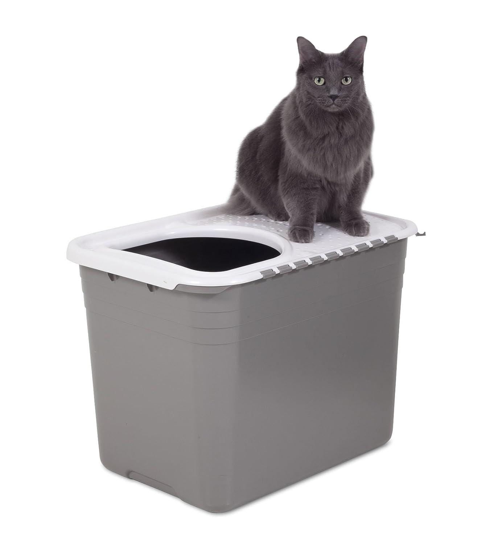 Amazon Petmate Top Entry Litter Pan Pet Supplies