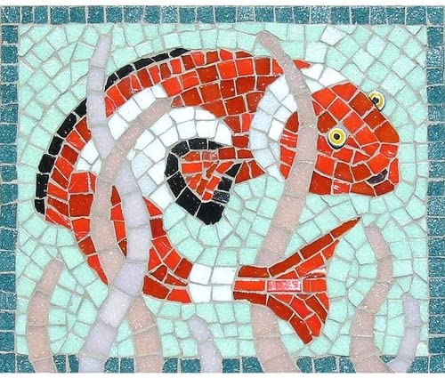 Clown Fish Mosaic Kit Designed by Martin Cheek with Tile nippers