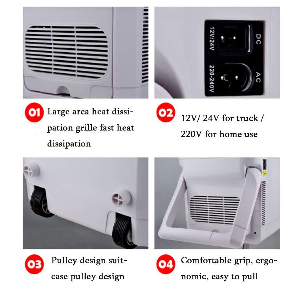 Mini Refrigerador Electrónico Portable (20L/24 Puede Blanco) El Refrigerador Compacto, El Refrigerador Termoeléctrico Y El Calentador Del Coche Del Warmer, ...