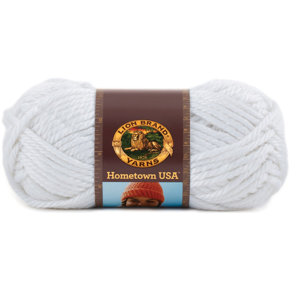 Lion Brand Yarn 135-153I Hometown USA Yarn, Oakland Black Darice