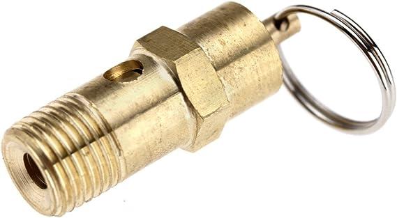 Sicherheitsventil 1 4 Zoll Bsp Für Kompressor Mit Druckmelder 145 Psi 10 Bar Aus Messing Baumarkt