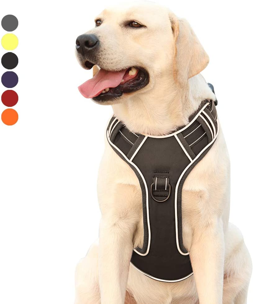 Heele Harnais pour chien anti-traction r/églable pour ext/érieur pour chiot 3 m chiens de petite 6 couleurs moyenne et grande tailles 4 tailles tissu Oxford r/éfl/échissant