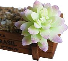 Loweryeah Artificial Flowers More Meat Plant Flowerpots Home Decor