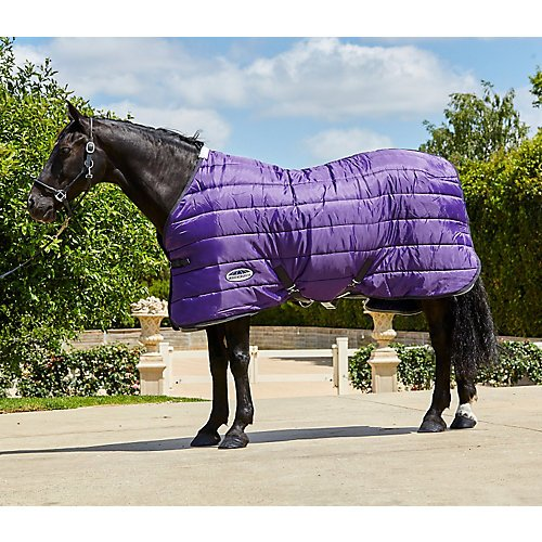 Weatherbeeta Comfitec 210D Channel Quilt Standard Neck Medium Purple/Black 78'' by Weatherbeeta