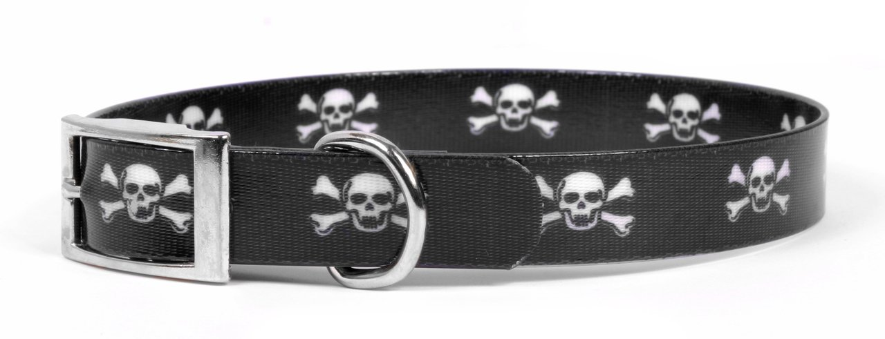 Yellow Dog Design Skulls Elements Dog Collar-Size Small-3/4 inch Wide and fits Neck Sizes 10.5 to 13 inches by Yellow Dog Design