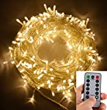 echosari 100ft/30m Warm White 300 LED Outdoor & Indoor Battery Fairy Lights w/Remote & Timer, Waterproof (8 Modes, 4 x AA batteries, Dimmable, Clear Cable)