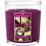 Colonial Candle Holiday Sparkle 22 oz Scented Oval Jar Candle
