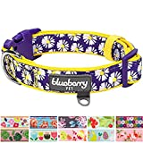 "Blueberry Pet 11 Patterns Soft & Comfy Spring Loving Daisy Prints Padded Dog Collar, Medium, Neck 14.5""-20"", Adjustable Collars for Dogs"