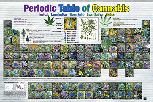Periodic Table Of Cannabis Reference Chart Poster 36x24