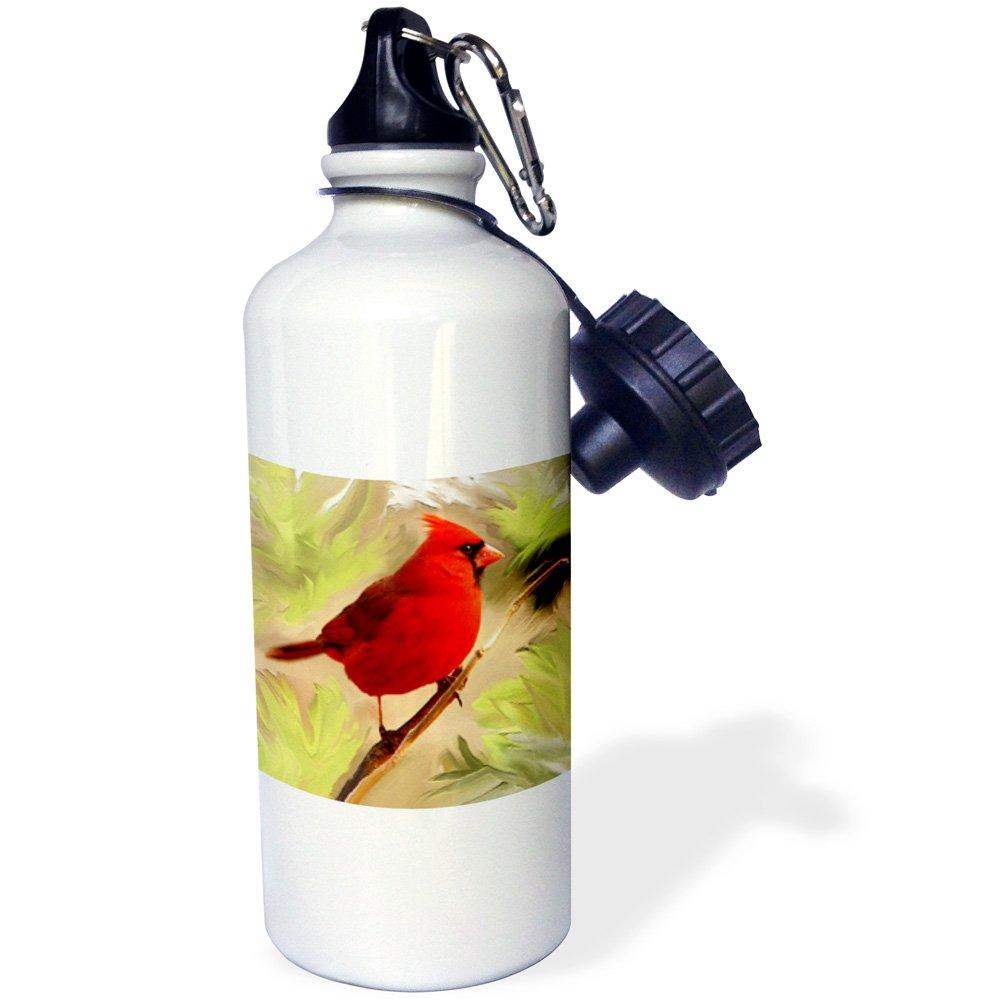 3dRose wb/_4442/_1Red Cardinal Sports Water Bottle 21 oz White