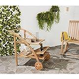 Modern Study Patio Wood Serving Cart with Metal Frame, Transporting, Tea Cart Ideal for Parties in Garden, Backyard, Kitchen, teak Finish, Outdoor Furniture, BONUS E-book