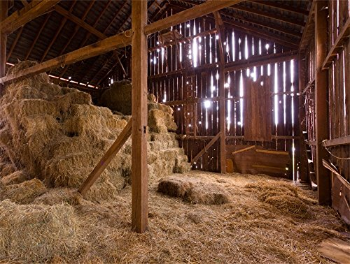 Barn Scene Setter - Leowefowa 9X6FT Vinyl Old Barn Backdrop