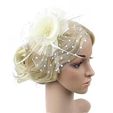 30a76ae4 Flower Net and Feathers Fascinator On A Clear Comb, Women Headband Hat Mini  Hair Clip For Wedding Party Banquet 6 Colors(Bei Bai): Amazon.co.uk:  Clothing
