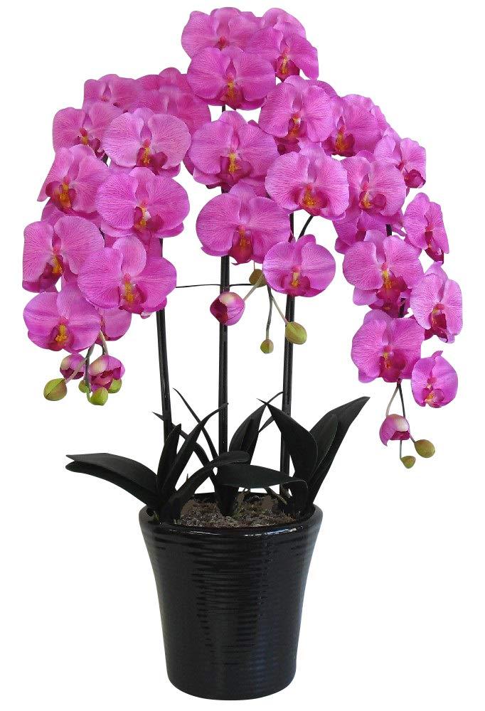 光触媒 造花の胡蝶蘭 鉢植え アートフラワー Lサイズ-3本立 H90cm(赤/オーキッド色-黒鉢) B00LKE42K4