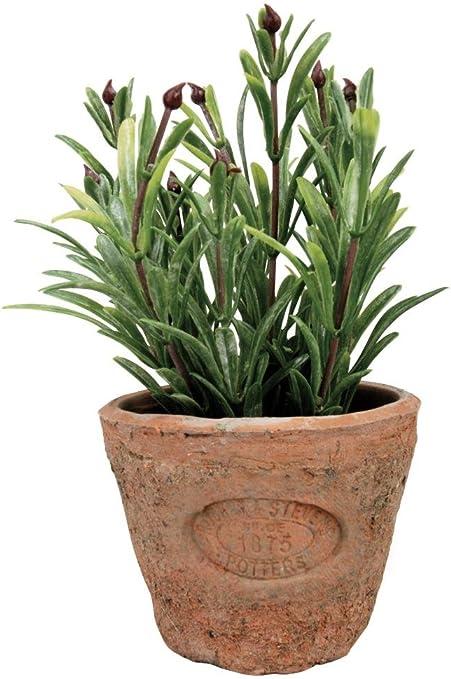 Amazon Com Esschert Design Artificial Herb Plant Rosemary Small
