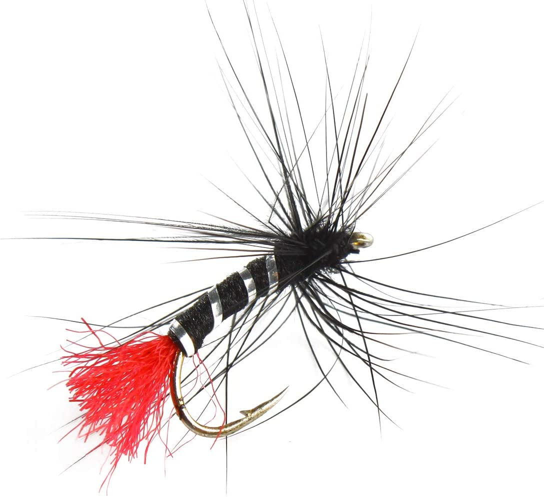 eine Vielzahl von nassen Fliegen und Nymphen DSA Andux Fliegenfischen Fliegen Sortiment Kit MEHRWEG