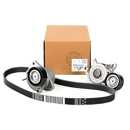 Kit de reparación de correa 508 PSA Tec A1616876980: Amazon ...