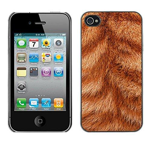 GooooStore/Housse Etui Cas Coque - Fur Close Orange Ginger Cat Stripes Animal - Apple iPhone 4 / 4S