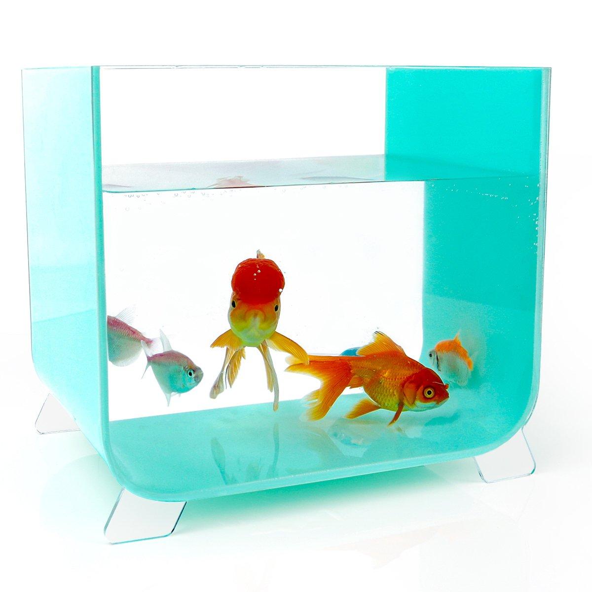 NewCrea acuario de acrílico con 4 pies para escritorio, azul, cuadrado: Amazon.es: Productos para mascotas