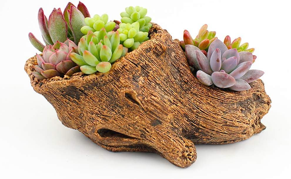 ChezMax Succlent Planter Driftwood Stump Fake Tree Root Natural Shape Vintage Concrete Cement Cactus Plant Pots
