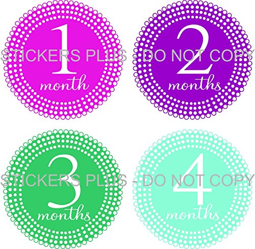 Baby Girl Month Stickers Monthly Baby Milestone Stickers Lots of Dots Mixed Colors All Different