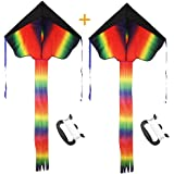 Rainbow Delta Kite, Easy Flyer, Long Tail Huge Flyer, for Kids and Adults, One of the Best Outdoor Activities for Kids, with Line and Handle
