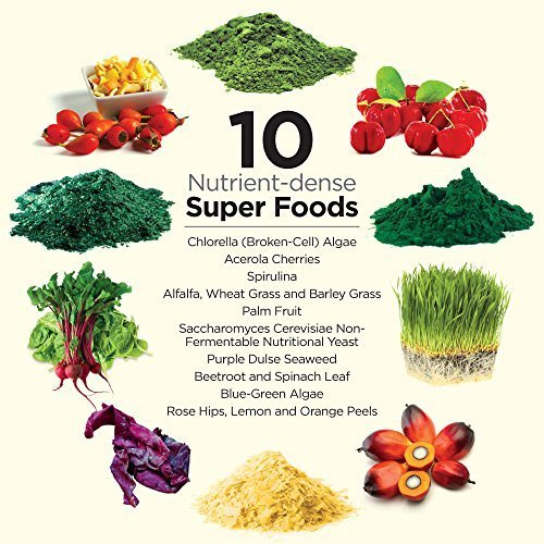 Dr. Schulze s SuperFood Plus Vitamin Mineral Herbal Concentrate Dietary Supplement Daily Nutrition Increased Energy Gluten-Free Non-GMO Vegan Organic 390 Vegetarian Tablets