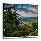 3dRose Mountain Laurel, Beacon Heights, Blue Ridge Parkway, North Carolina – Wall Clock, 10 by 10-Inch (dpp_209355_1) For Sale