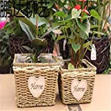 EXDJ Pure hand woven willow straw rattan flower pot simple Flower basket,21x14cm