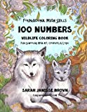 Foundational Math Skills - 100 Numbers - Wildlife Coloring Book: Fun-Schooling with Art, Creativity & Logic - 1st, 2nd & 3rd Grades
