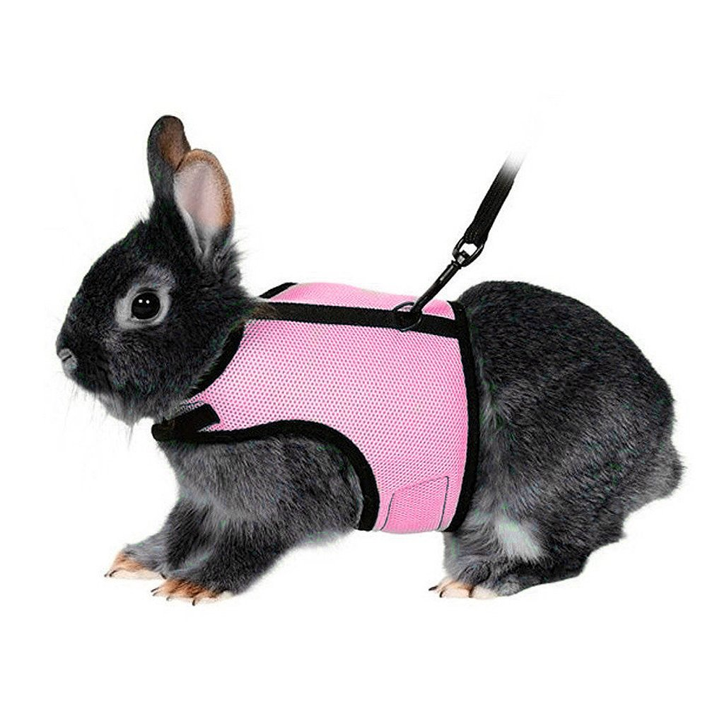 Bwogue Soft Harness with Stretchy Leash for Rabbits,Large