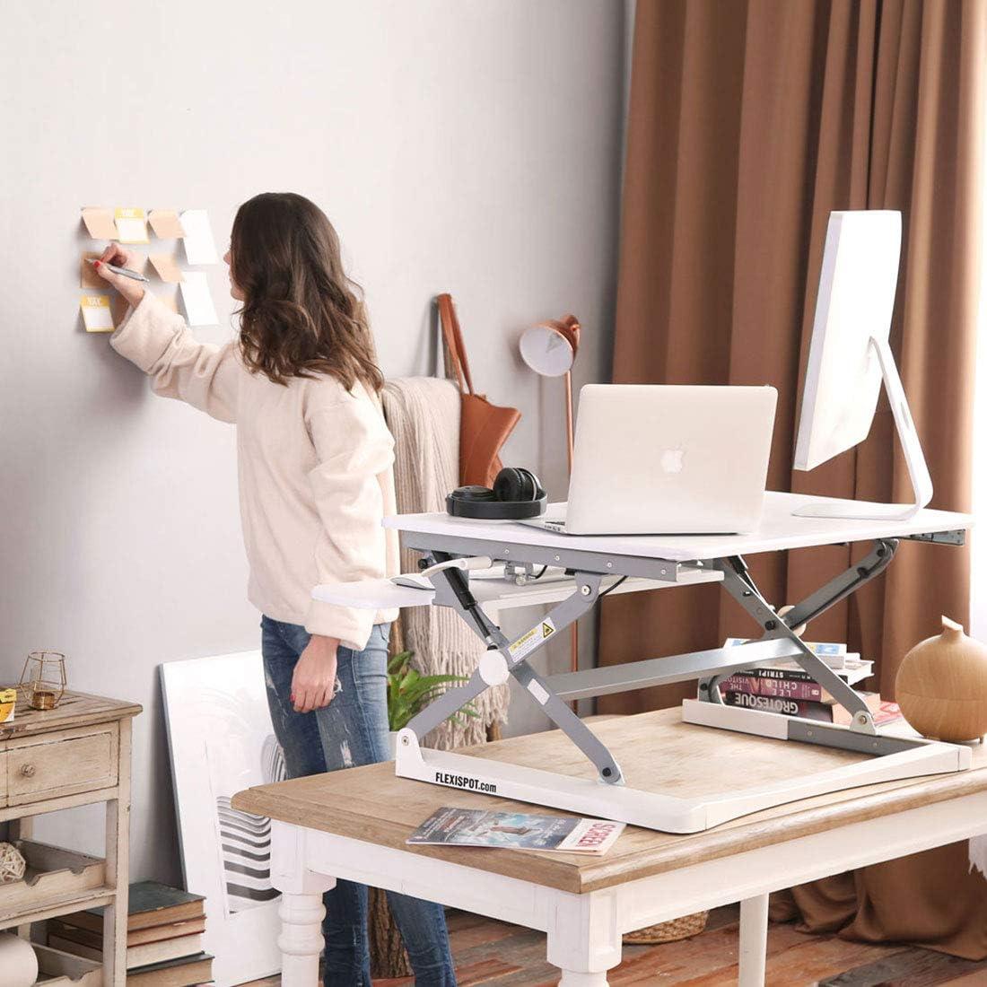 FlexiSpot M2W Standing Desk Riser
