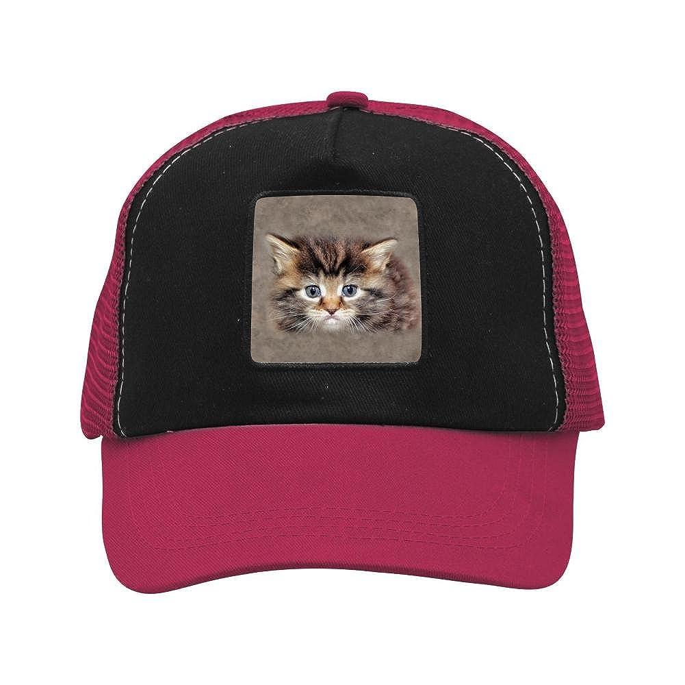 Adult Mesh Cap Hat Adjustable for Men Women Unisex,Print Sad Cat