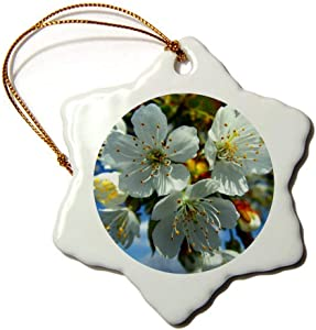 Christmas Ornaments, White Apple Blossom Flowers Porcelain Snowflake Ornament Tree Hanging Decor Gift for Families Friends,3 Inch