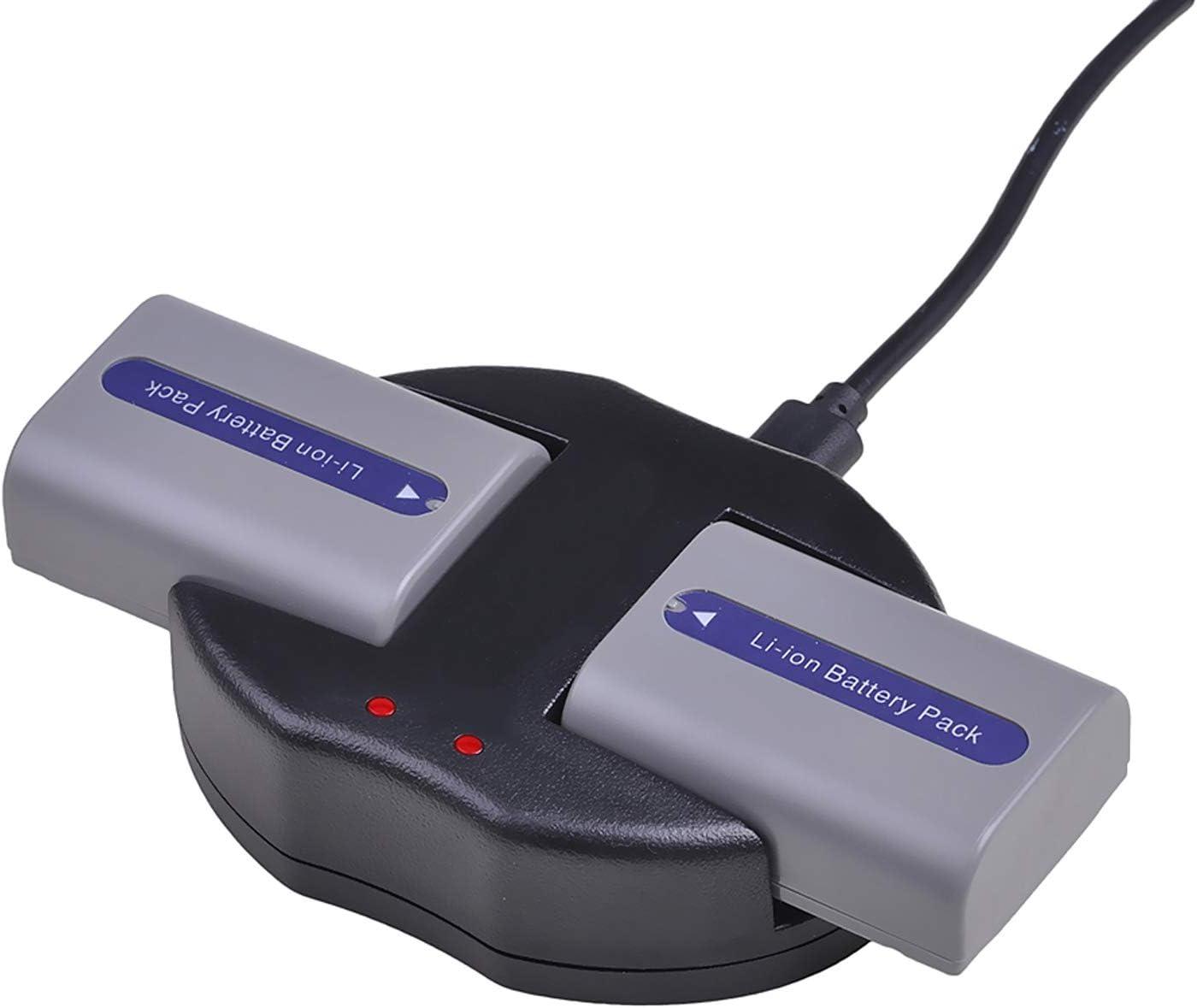 DCR-HC39E Handycam Camcorder DCR-HC35E DCR-HC36E Battery 2 Pack for Sony DCR-HC35 DCR-HC39 DCR-HC36