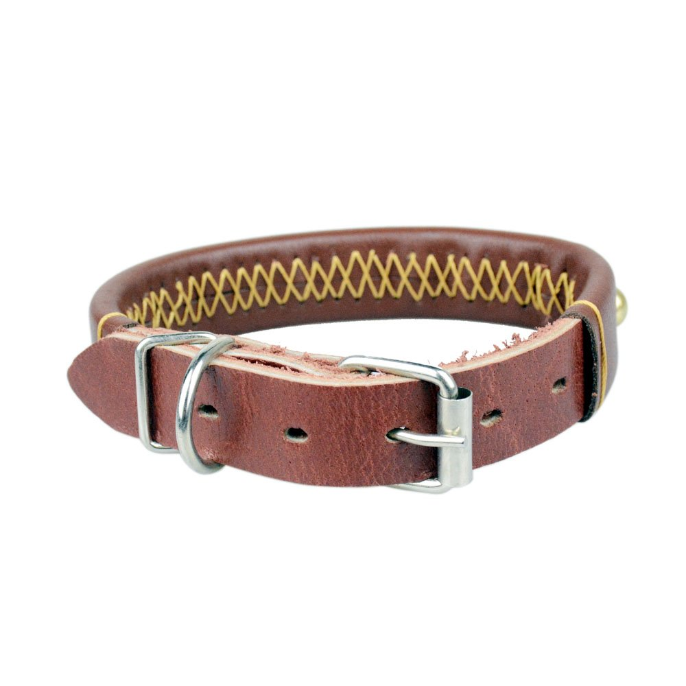 Random color M Leather Padded Dog Collar The CAILLU-Luxury Real Leather Padded Dog Collar,Adjustable Sizes with.