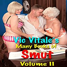 Vic Vitale's Many Books of Smut: Volume II Audiobook by Vic Vitale Narrated by Rod O'Steele